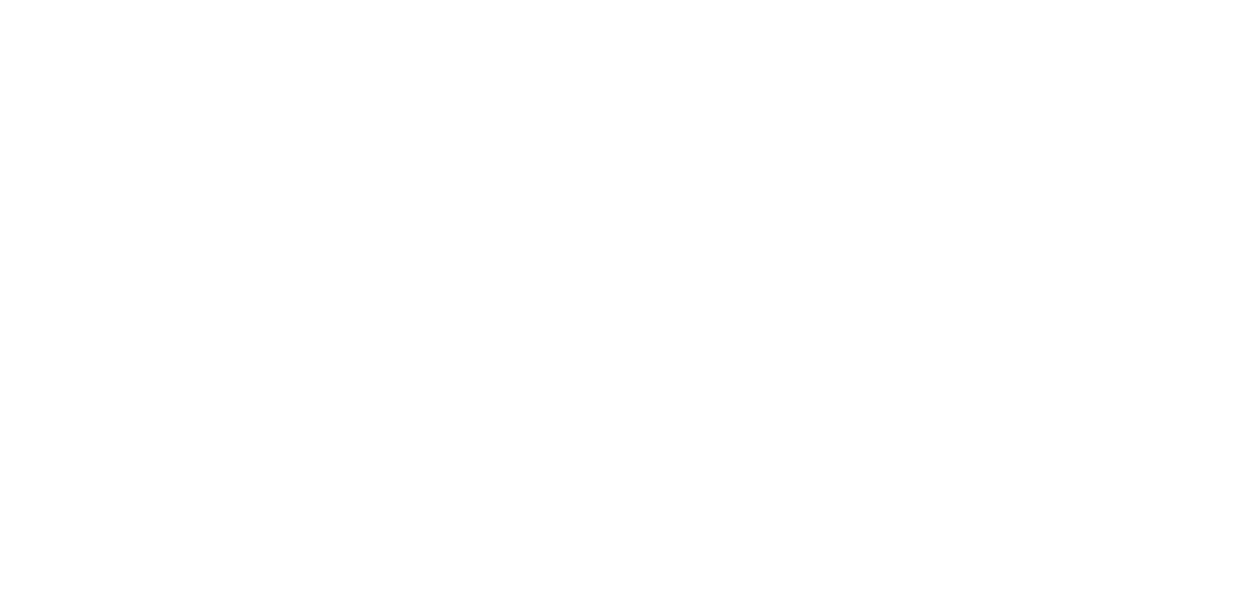 Love: Dr. Susan Love Foundation for breast cancer research
